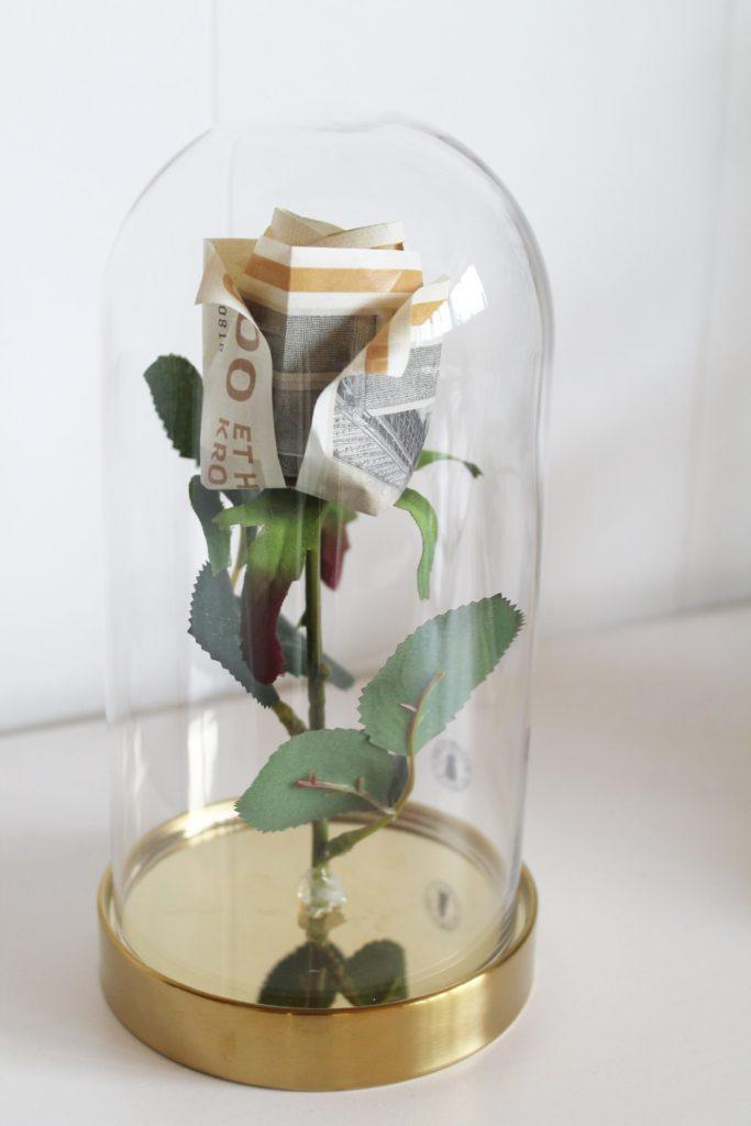 Den fineste penge-rose